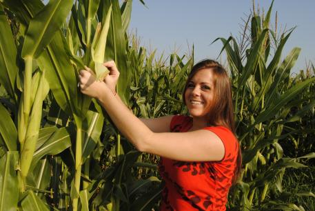 Ag student looking at corn