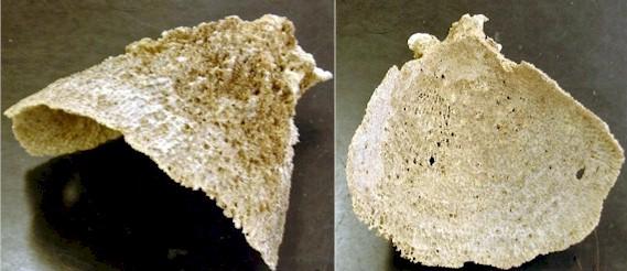 basket sponge