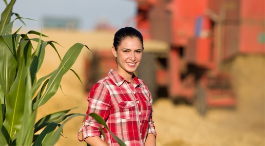 Agriculture student in the cornfield