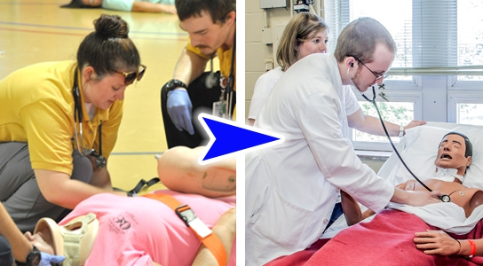 Paramedic to RN