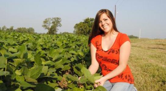 Student inspecting bean crop